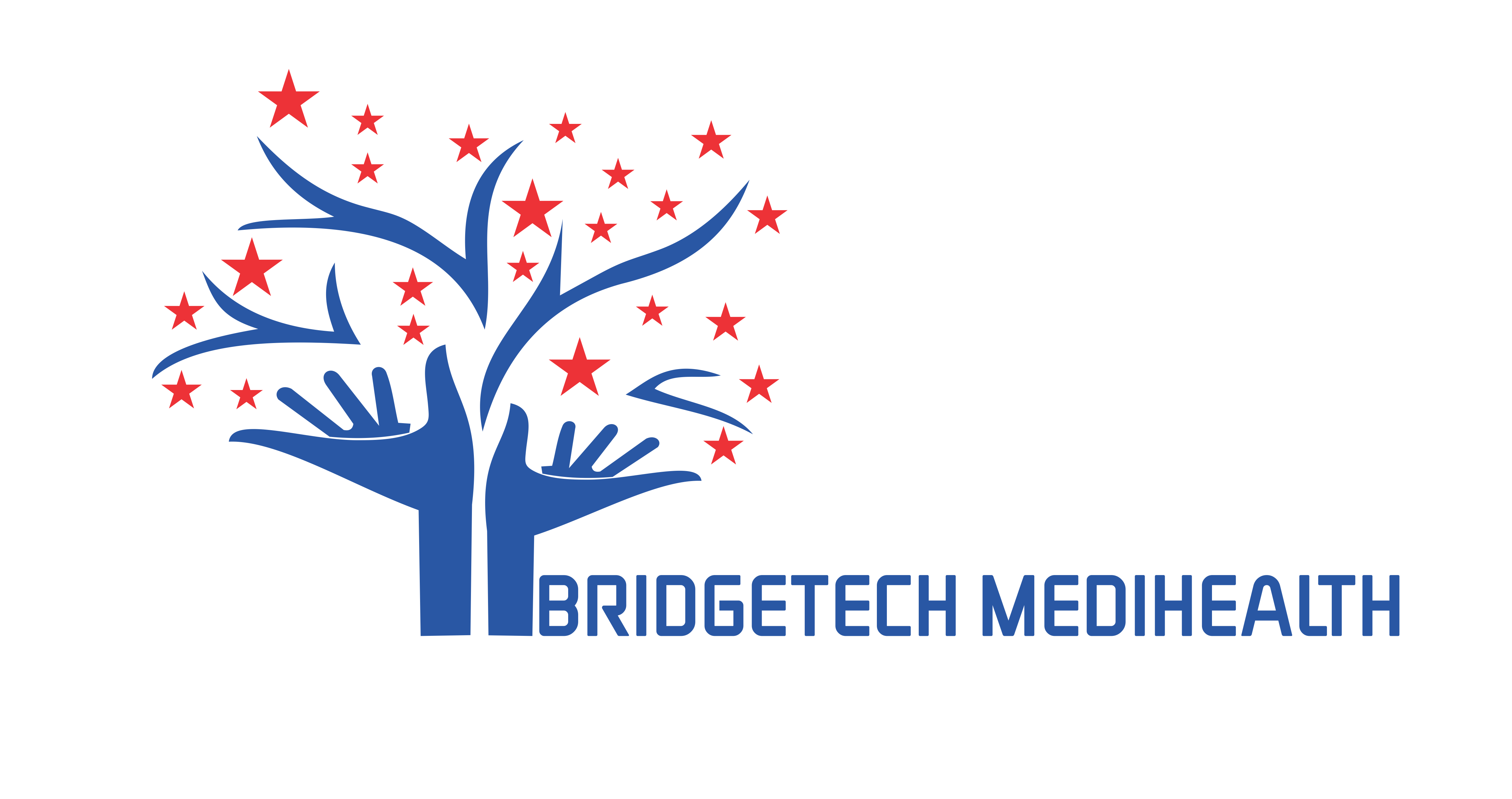 bridges_healthcare